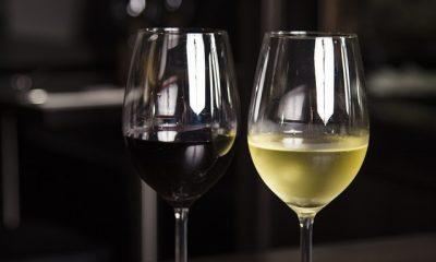 podział win białe i czerwone
