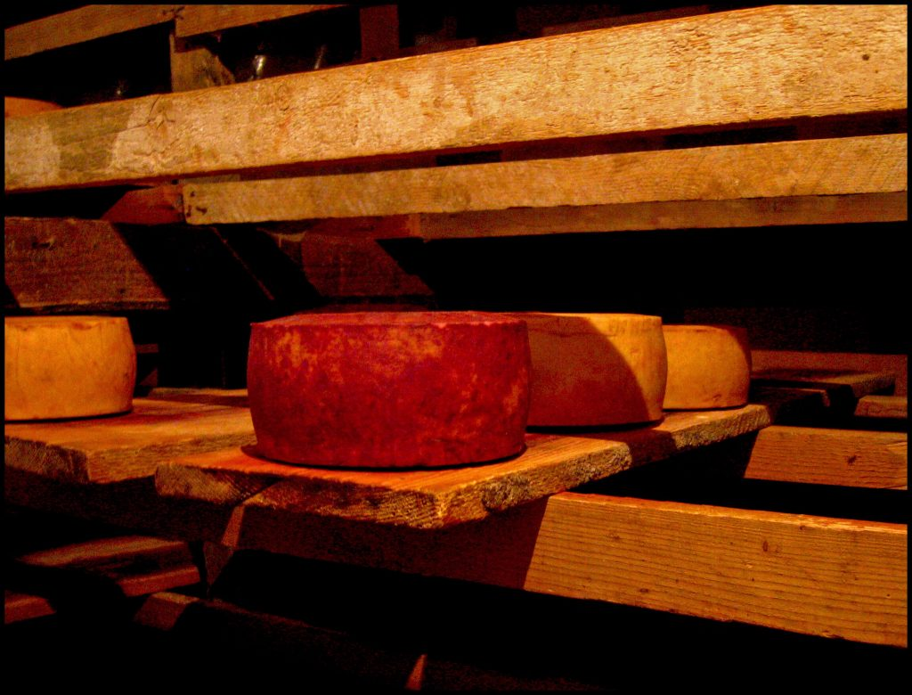 Paski sir