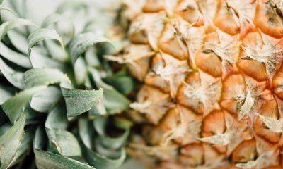 skórka ananasa