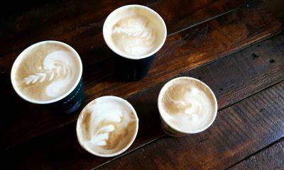 Kawa z Kociej Kawiarni