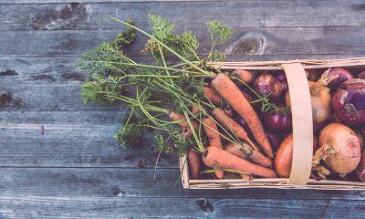 Warzywa w koszyku