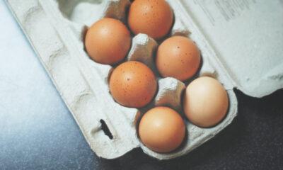 Czekoladowy omlet przepis